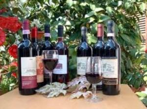 Сухие вина Италии